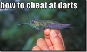 How to cheat at darts