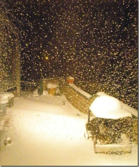 Snow 2008 064