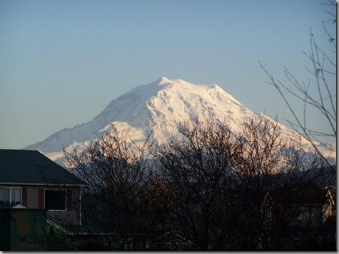 Mt Rainier from Friends House