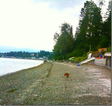 Beach Walk 06-19-10