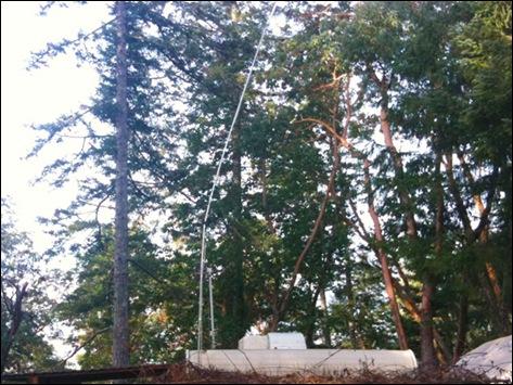 Bent Antenna