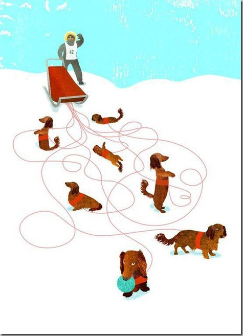 Why Dachshunds will Never Be Sled Dogs