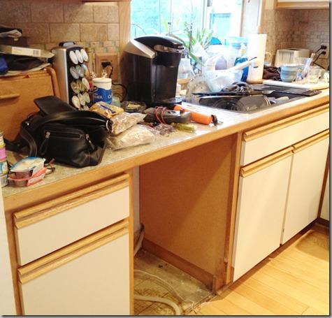 Not Ready for Company - kaput dishwasher