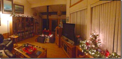 Christmas Light 2013
