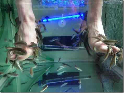 Nate Fish Feet Singapore-3