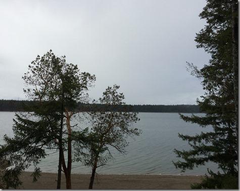 Gray Wet Day 3-29-14