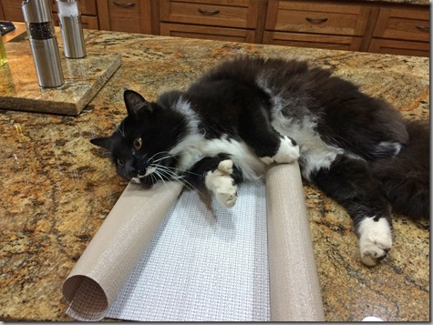 Mojo Is Not Helping with Shelf Liners-2 8-30-14