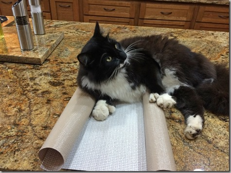 Mojo Is Not Helping with Shelf Liners 8-30-14