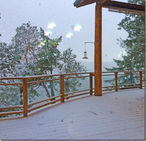 Dusting of Snow-2 11-29-14