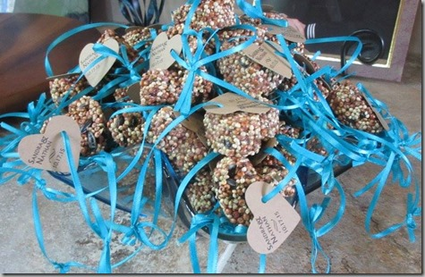 Birdseed Party Favors 10-17-15