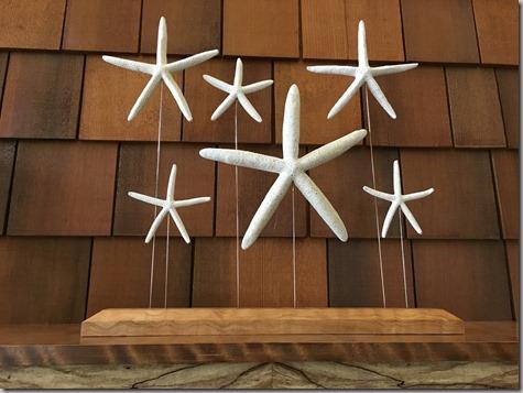 Mantel Starfish Up Close 4-12-16