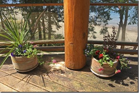 Deck Pots-2 4-30-17