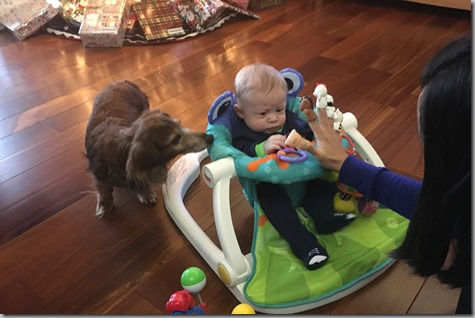 Quinn with Bailey and Finger Puppets 12-18-17