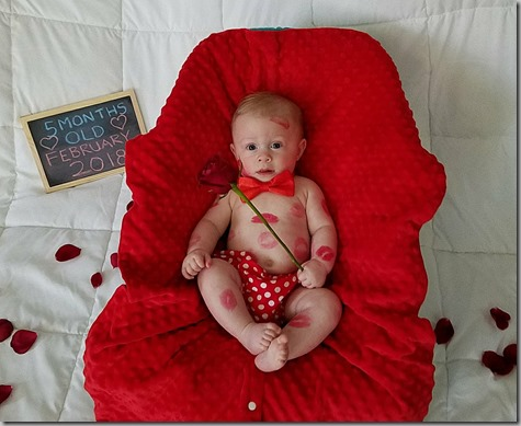 Quinn is 5 months old cropped 2-18-18
