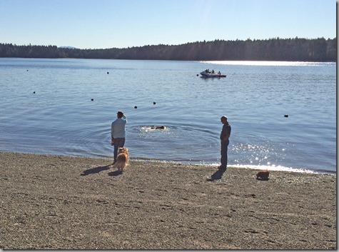 Tom John and Dogs on Beach 9-13-14