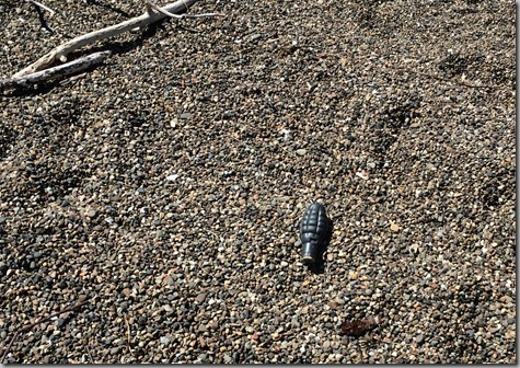 Beach Walk 4-16-15 - WHAT IS THIS