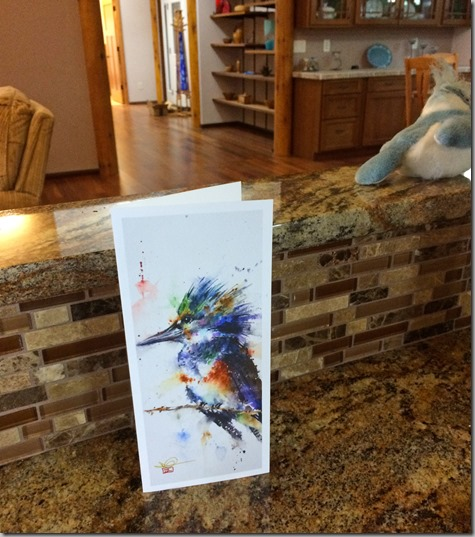 Helen's Kingfisher Birthday Card 5-8-15