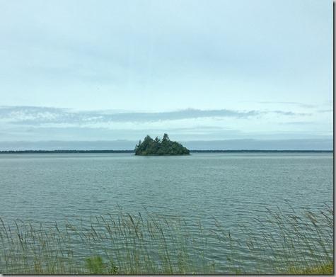 Cute Island in Willupa Bay 6-1-16