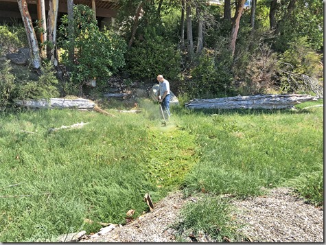 John Weedeating the Seagrass Path 7-8-18