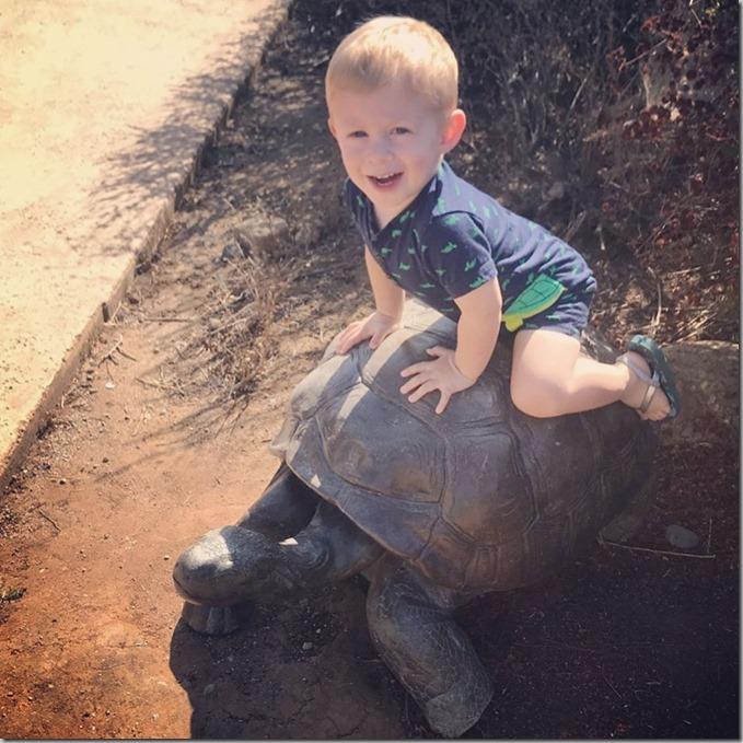 Quinn on Turtle 10-13-19