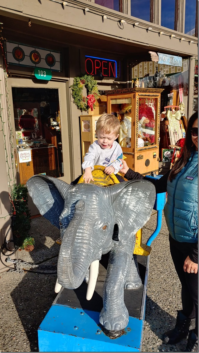 LaConner Elephant 12-29-19