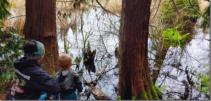 Sandra and Quinn Peering at Wetlands 4-26-20