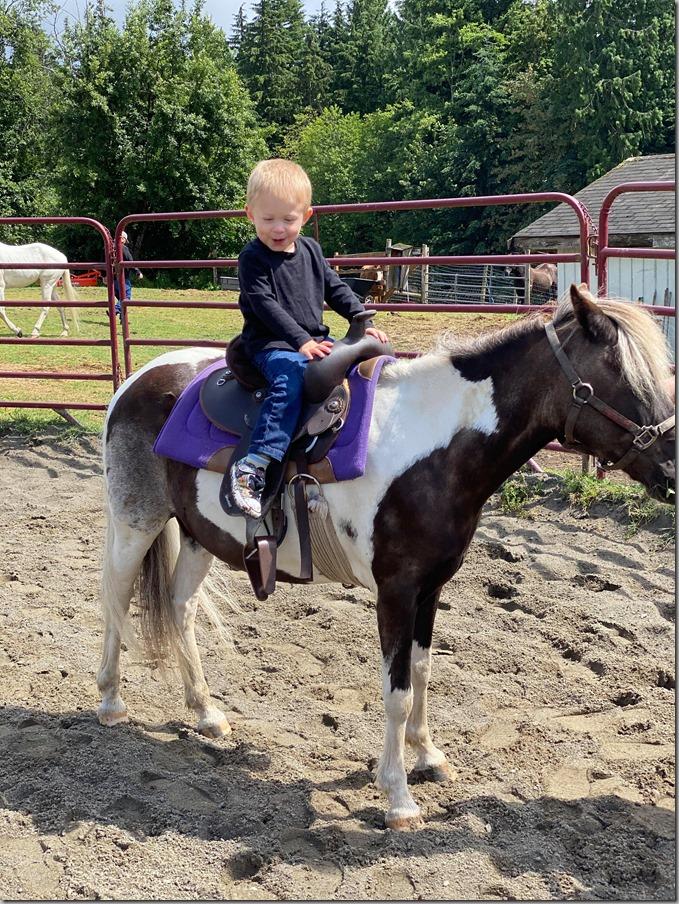 Quinn on Pony 6-28-20