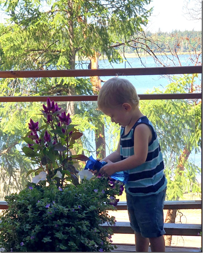 Quinn Watering Flowers 7-18-20