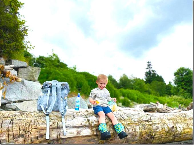 Quinn on Beach Log 6-10-20