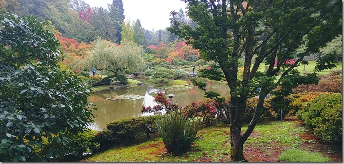 Japanese Garden 10-17-20