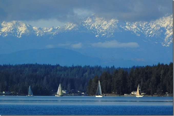 Sailboat Races 11-21-20