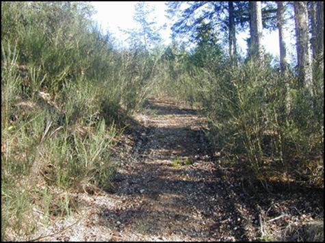 10-26-03 path heading up