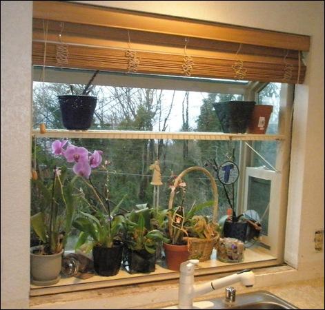 garden window - before