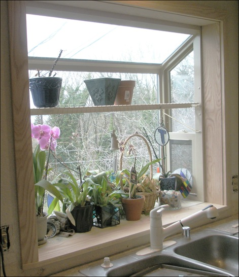 garden window2