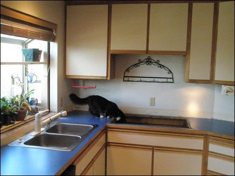 kitchen-where da stove go