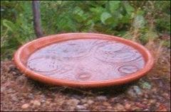 rain drops in bird bath