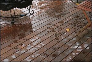 rain polka dots