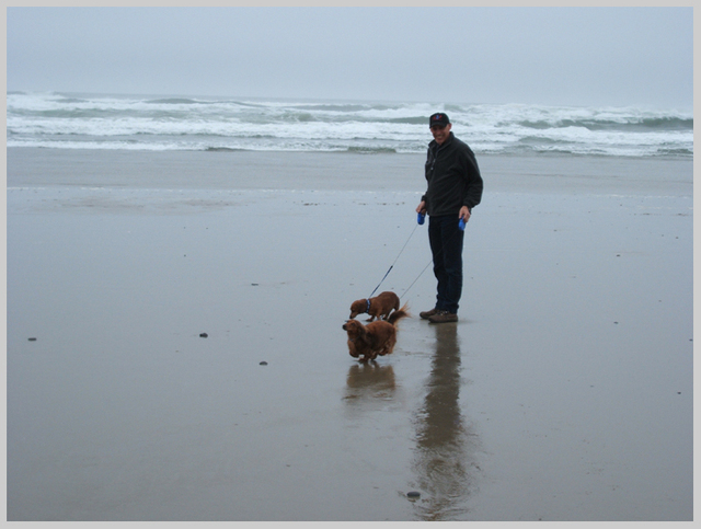 Cannon_beach_027_2