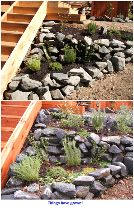 Flowerbed_before_and_after_1